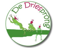 bs-dedriesprong-school-partner